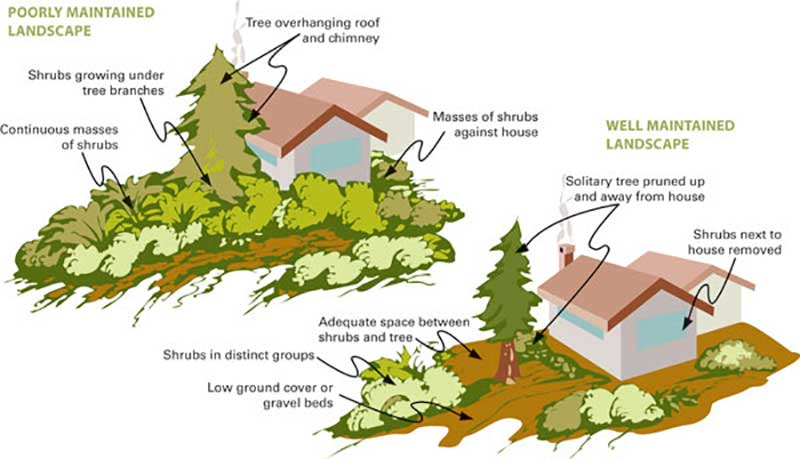 Diagram comparing a poorly maintained landscape vs a well-maintained one
