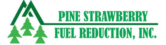 Pine Strawberry Fuel Reduction